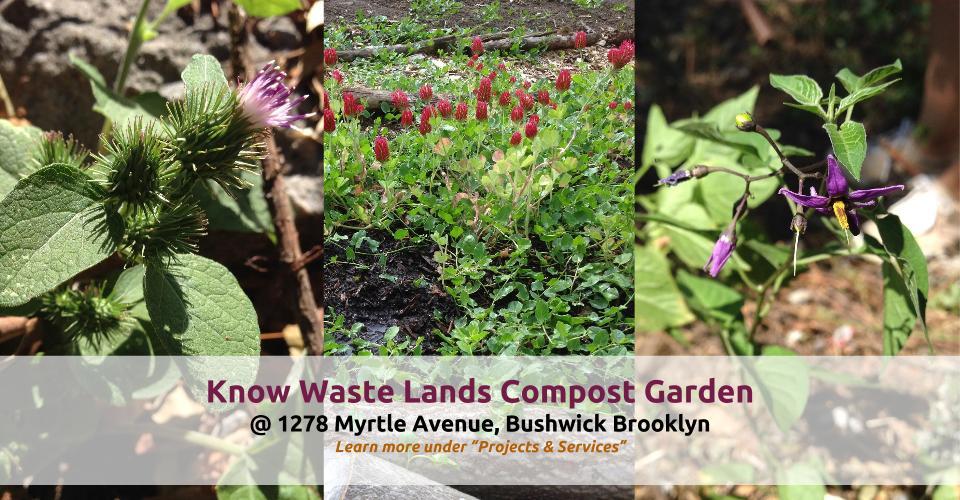 Know Waste Lands-1